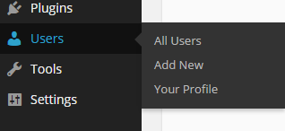 Updating user profile after logging into WordPress